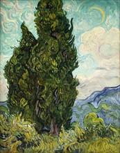 Van Gogh, Les Cyprès
