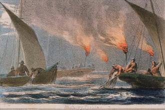 Fishing fleet netting anchovy at night using flares