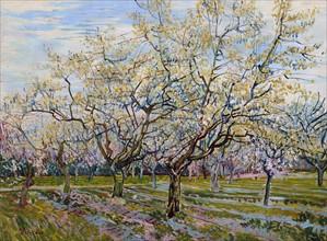 Van Gogh, Le Verger blanc