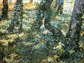 Van Gogh, Sous-bois