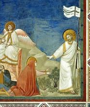 Giotto, Noli me Tangere
