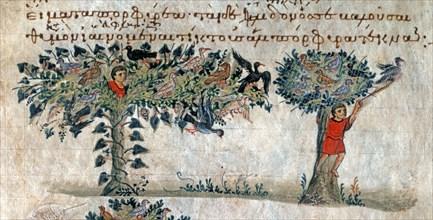 """Oppien d'Apamée, """"Cynégétiques"""" : Chasse aux oiseaux avec une résille"""