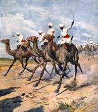 Guerre italo-turque: troupes indigènes de la colonie d'Erythrée en Tripolitaine, en reconnaissance vers les tranchées ennemies à dos de chameau (1912)