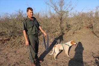 Johan van Straaten, dresseur de chiens, tient un chien en laisse au Southern African Wildlife College à Hoedspruit (Afrique du Sud)