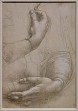 """""""Female arms and hands. Small Man's head in profile"""", by Leonardo da Vinci"""