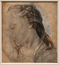 """Female Head"", by Biagio d'Antonio Tucci"