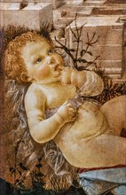 """Madonna adoring the Child"", by  Domenico del Ghirlandaio"
