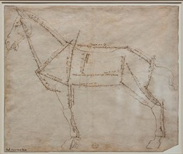 """""""Measured Drawing of a Horse in Profile View"""", by Andrea Del Verrocchio"""
