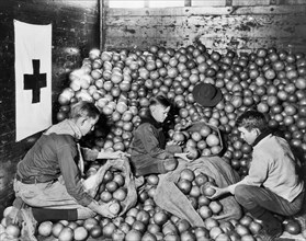 Boy Scouts unloading Fruit donated by Fruit Growers and supplied by American Red Cross for Drought Sufferers, Cleveland