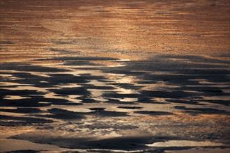 Trouville sur Mer, plage au soleil couchant