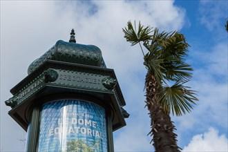 Paris, palmiers et colonne Morris
