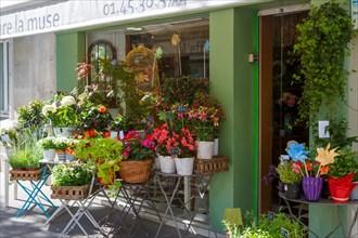 Paris, fleuriste rue d'Alésia