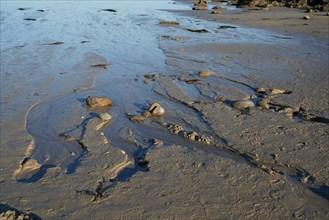 Marée basse, Pointe de Kermorvan, Finistère nord