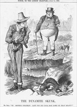 'The Dynamite Skunk', 1884. Artist: Joseph Swain
