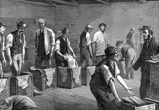 Packing tea in the warehouses of the East & West India Dock Company, London, 1874 Artist: Unknown
