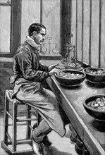 Testing the weight of gold pieces, Paris mint, 1892. Artist: Unknown