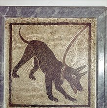 Roman mosaic of dog, Cave Canem, Pompeii, Italy. Artist: Unknown