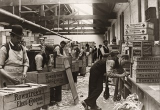 Men sealing cases of Rowntree?s Elect Cocoa, York, Yorkshire, 1893. Artist: Unknown