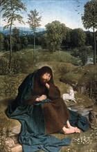 'John the Baptist in the Wilderness', 1490-1495. Artist: Geertgen tot Sint Jans