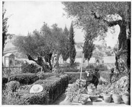 'The Garden of Gethsemane, Palestine', late 19th century.Artist: John L Stoddard