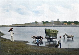 Colombo, Ceylon, c1890. Artist: Gillot