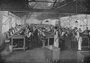 One of the cigar manufacturing departments at Salmon and Gluckstein, Ltd, London, c1870s (1903). Artist: Unknown.