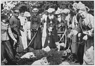 Judging cats at the Royal Botanic Gardens show, Kew, London, c1900 (1901). Artist: Unknown.
