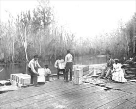 Loading oranges on the Ocklawaha River, Florida, USA, c1900. Creator: Unknown.