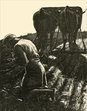 'The Hidden Treasure', 1864, (1928).  Creator: Dalziel Brothers.