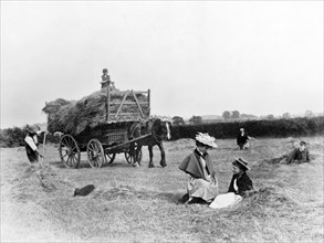 Haymaking, Clifton, Nottinghamshire, 1895. Artist: Unknown