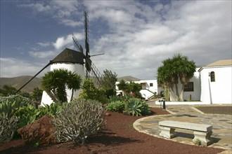 Windmill, Antigua, Fuerteventura, Canary Islands.