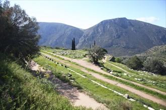 The gymnasium at Delphi, Greece. Artist: Samuel Magal