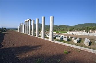 Stoas of the gymnasium at Messene, Greece. Artist: Samuel Magal