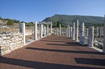 The gymnasium at Messene, Greece. Artist: Samuel Magal