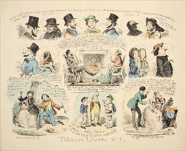 Tobacco Leaves No. 1, pub. 1851 (hand coloured engraving)