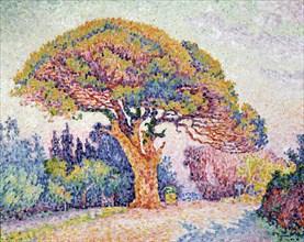 'Le Pin de Bertaud at Saint-Tropez', 1909.  Artist: Paul Signac