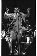 B.B. King, Capital Jazz, Knebworth, 1982.   Artist: Brian O'Connor.