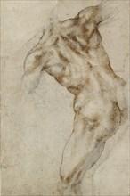 Nude male Torso, early 16th century. Artist: Michelangelo Buonarroti.