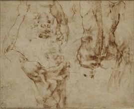 Nude Studies, c1490-1560. Artist: Michelangelo Buonarroti.