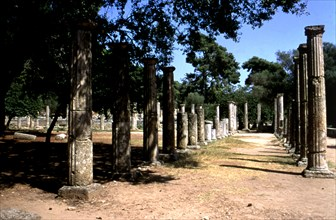 View of the columns of the Olympia Gym.