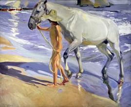 'The Horse's Bath', oil, 1909 by Joaquin Sorolla.