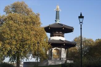 UK, London, Battersea Park, 2009. Creator: Ethel Davies.