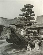 The Pine-Tree Junk at Kinkakuji', 1910.