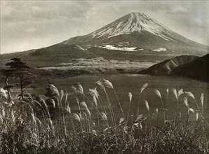 Fuji and the Kaia Grass', 1910.