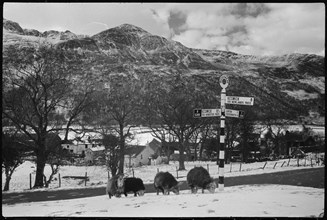 Buttermere, Cumbria, c1955-c1980