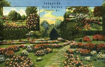 Sunnyside Rose Garden, Charlotte, N.C.', 1942.
