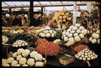 Chelsea Flower Show, London, 1962