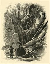 'Ice Glen, Stockbridge', 1874.  Creator: John J. Harley.