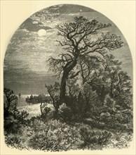 'Point of Cape Ann, from Cedar Avenue, Pigeon Cove', 1874.  Creator: J. C. S..