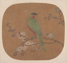 Parrot on Branch of Blossoming Tree. Creator: Unknown.